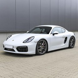 Porsche 981 Cayman (2012-15) - Service Manual - Wiring Diagram