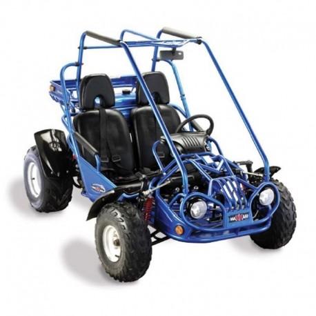 ACE Maxxam 150 2R Buggy