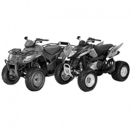 Arctic Cat Dvx 300 and 300 Utility