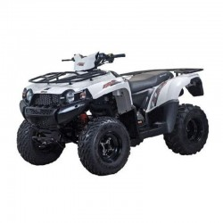 Britech Eagle 300 Quad