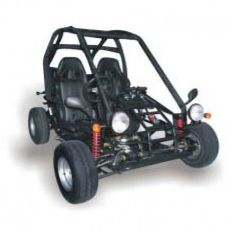 Dazon Raider 250 Buggy