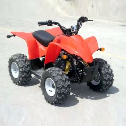 Linhai ATV Mini, Youth Service Manual / Service Manual